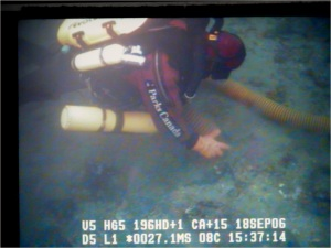 Parks Canada Underwater Archaeologist at Section Cove, 2006