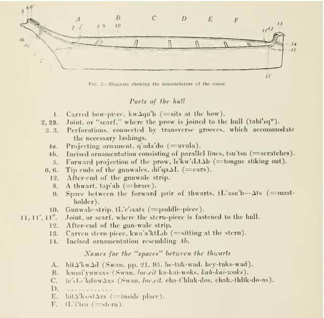 Makah whaling gear | Northwest Coast Archaeology