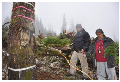 Klahoose Arborglyph Ceremony. Source: Klahoose First Nation.