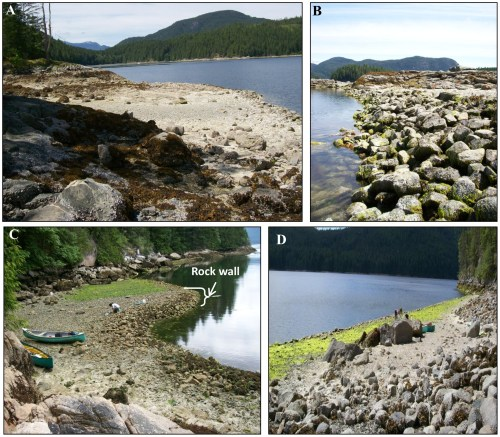 Quadra Clam Gardens. Source: Groesbeck et al. PLOS-1, 2014.