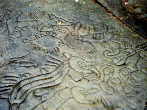 Petroglyph from Petroglyph Park, Nanaimo. Source: danielleen.org