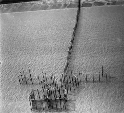 Alaska fish trap, Cook Inlet, ca. 1948.  Source: http://vilda.alaska.edu/cdm/singleitem/collection/cdmg2/id/6703/rec/47