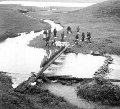 Natives dividing the fish from the trap.  Nikolski, Aleutians. ca. 1938. Source: http://vilda.alaska.edu/cdm/singleitem/collection/cdmg13/id/7679/rec/39