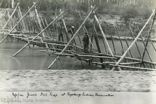 Yelm Jim's fish weir on the Puyallup River ca. 1885. Click for high resolution.  Source:  http://www.digitalarchives.wa.gov/Record/View/7DE71DBBEDCF71DCADF61AEFB20FFBA6