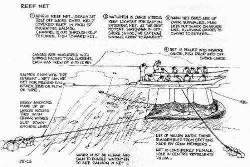 Diagram of reef netting by Hillary Stewart.