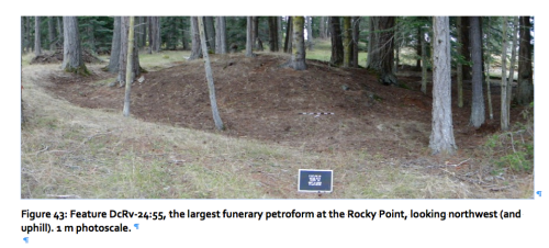 "Alongside Darcy's thesis, more  evidence of humanity's ""piling behaviour""; feature 55 at DcRv 24, Rocky Point, BC."