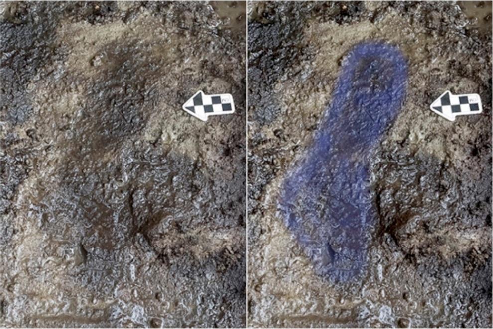 calvert-footprints