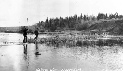 Fish weir and traps at Fraser Lake, 1908. Source BC Archives, https://goo.gl/eJjF46.
