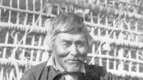 "Close up of Enoch and his new weir, ""made from young Jack pine and lashed together with wild rose roots."" Source: BC Archives."