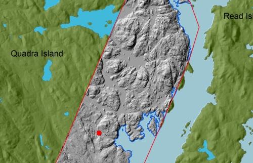 Hillshaded Lidar bare-earth model (grey) vs 1:20,000 model (green) for central Quadra. Source: Lausanne/Vogelaar.